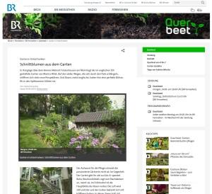 Garten! Trends