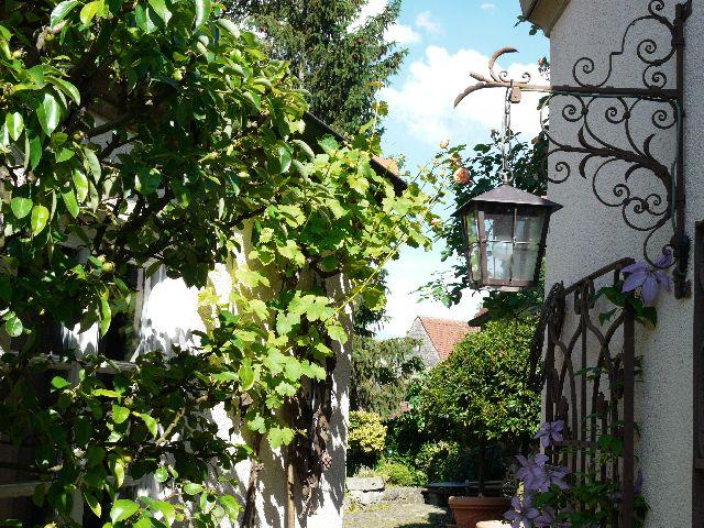 Garten Wüst Frickenhausen